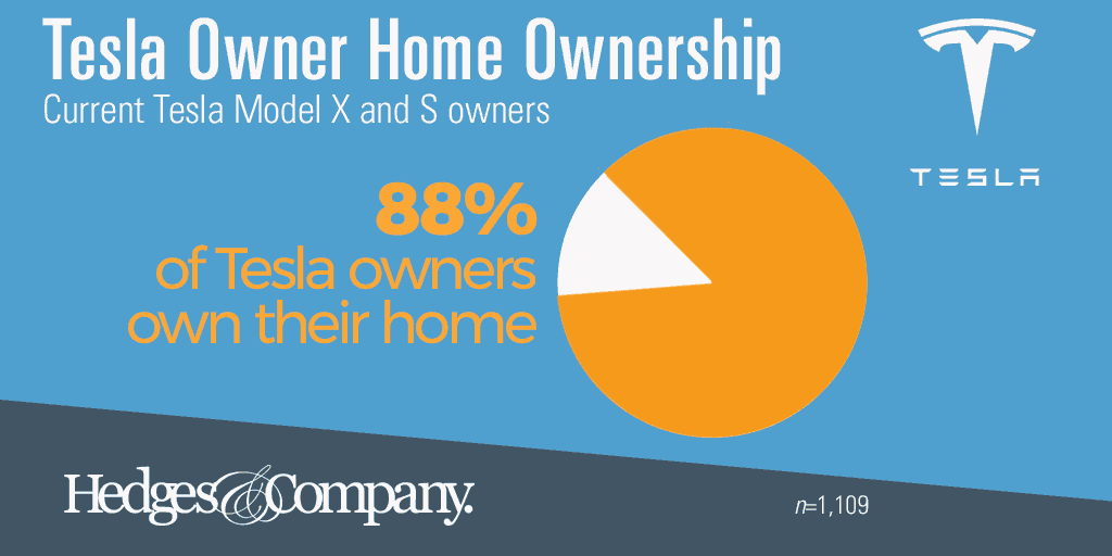 Tesla owner demographics home owner