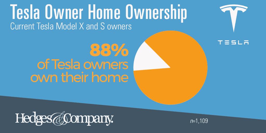 Tesla owner demographics home owner