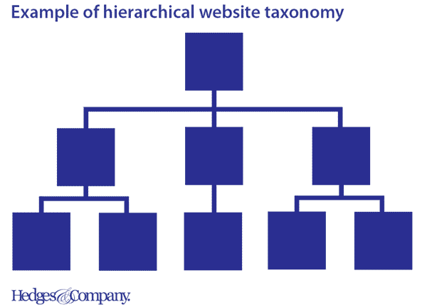 hierarchical website taxonomy example